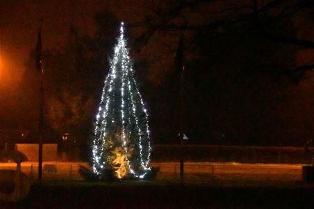 Lichtjes In De Kerstboom Fonkelen Op Meylandt Internetgazet